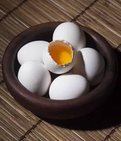 tips eiwit dieet