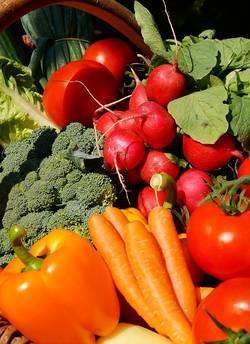 Veel verschillende soorten groenten bij elkaar
