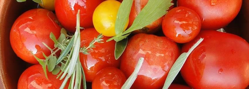 De juiste manier om koolhydraatarme tomatensoep te maken (+ vergelijking)